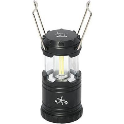 Lumens Lantern Light