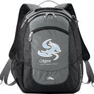 High Sierra Fly�By Compu�Backpack
